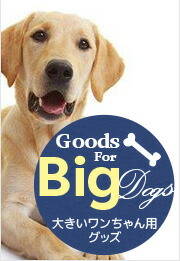 Goods for Big dogs