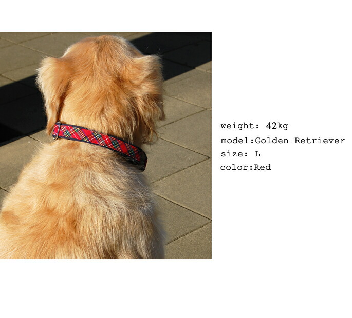 weight:42Kg/model:Golden Retriever/size:L/color:Red