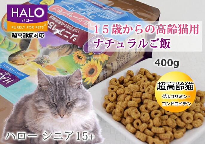 tezukayamahoundcom rakutenichibaten rakuten global market dry cat
