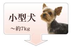 アトラス小型犬サイズ