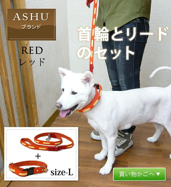 大型犬用ソフトな首輪とリードのセット