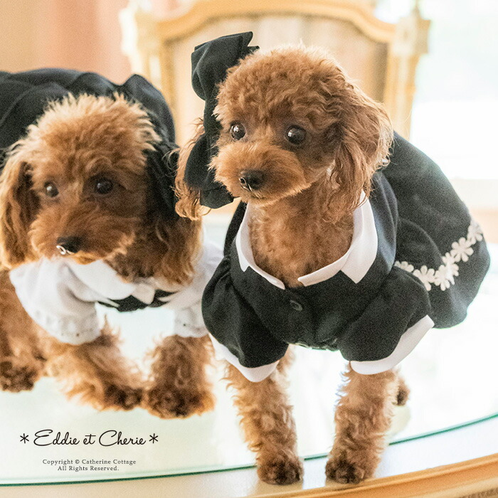 犬用ドレス