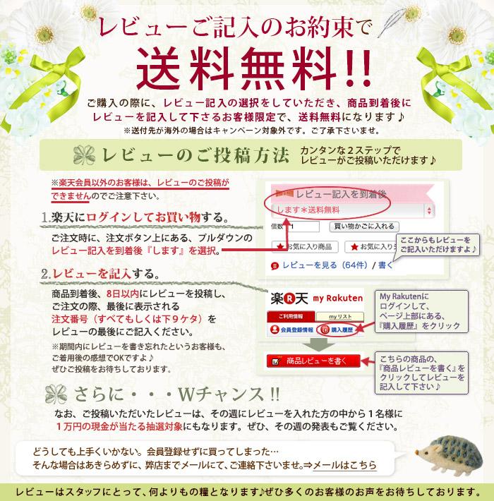 レビューご記入のお約束で送料無料!