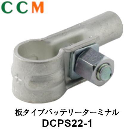 DCPS22-1