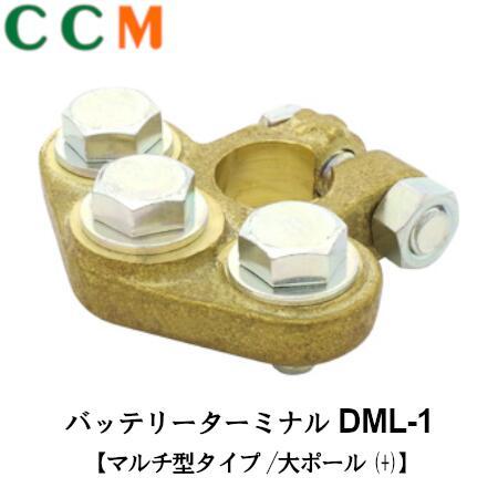 DML-1