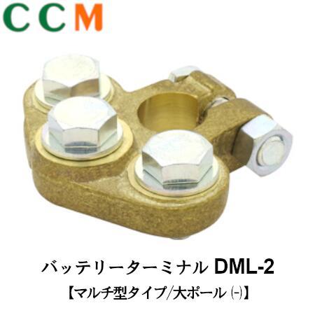 DML-2