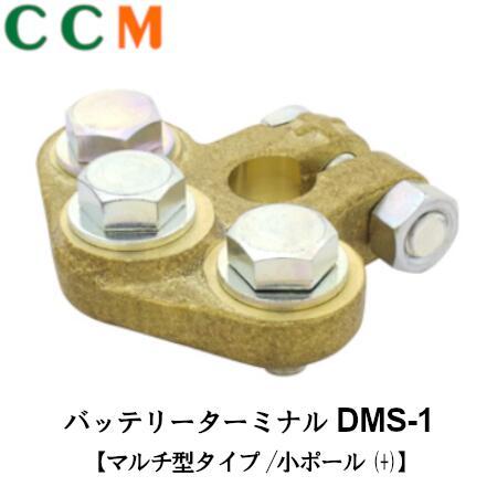 DMS-1
