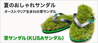 夏のおしゃれサンダル 草サンダル