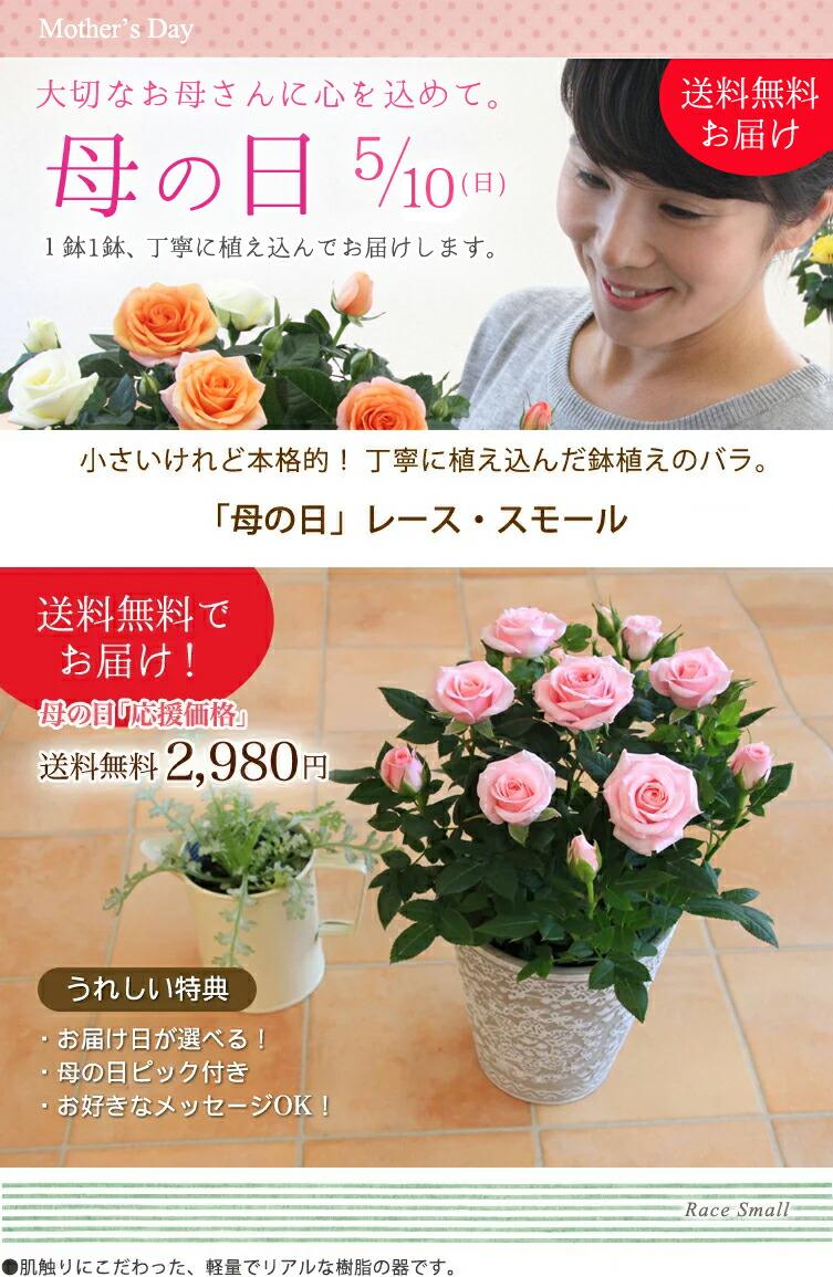 【母の日】送料無料★レース・スモール!