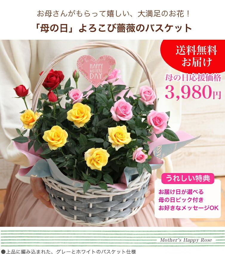 お母さんが、もらって嬉しい大満足のお花!「母の日」よろこび薔薇のバスケット♪