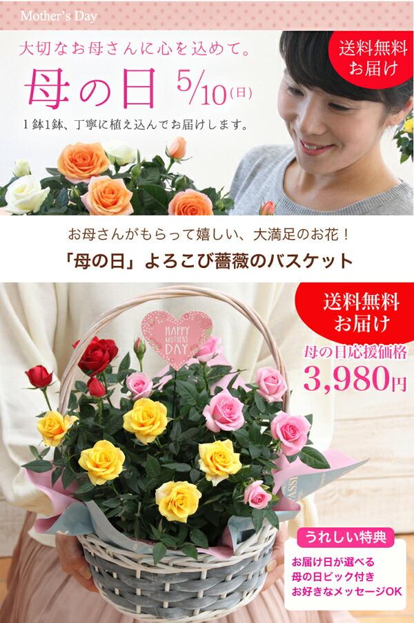 【母の日】送料無料★よろこび薔薇のバスケット!