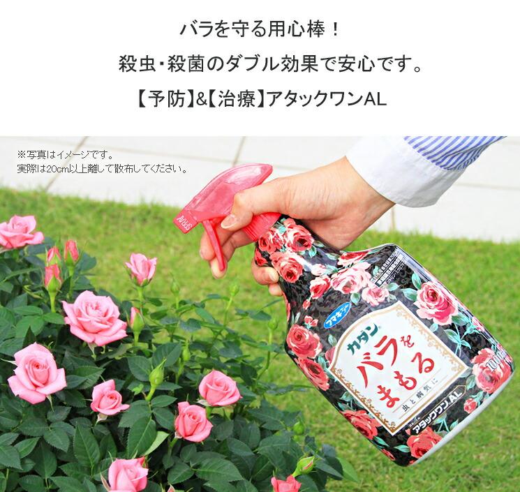 アタックワン01バラを守る用心棒!殺虫・殺菌のダブル効果で安心です。【予防】&【治療】アタックワンAL