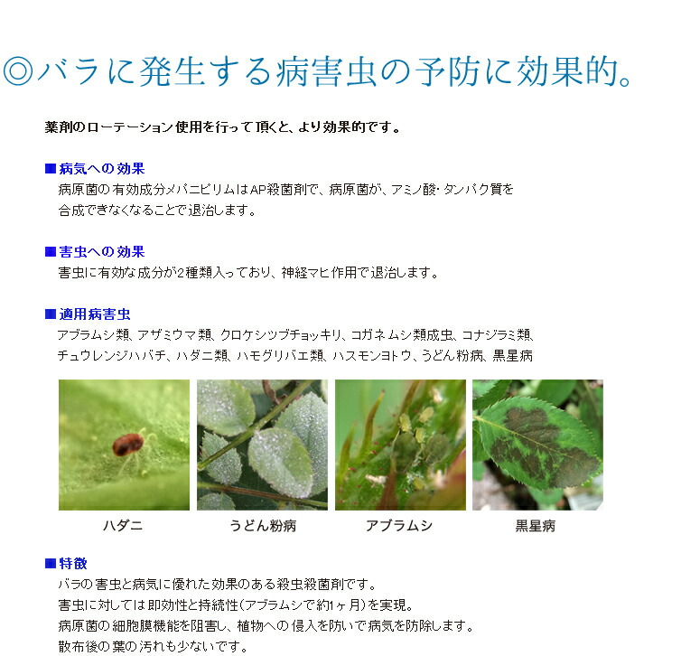 ベニカX02バラに発生する病害虫の予防に効果的