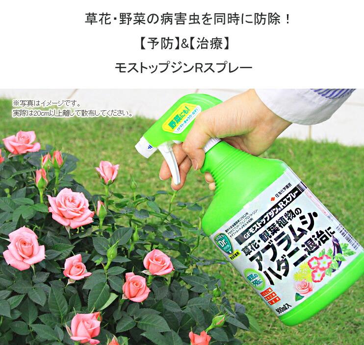 モストップジンR01草花・野菜の病害虫を同時に防除!【予防】&【治療】モストップジンRスプレー