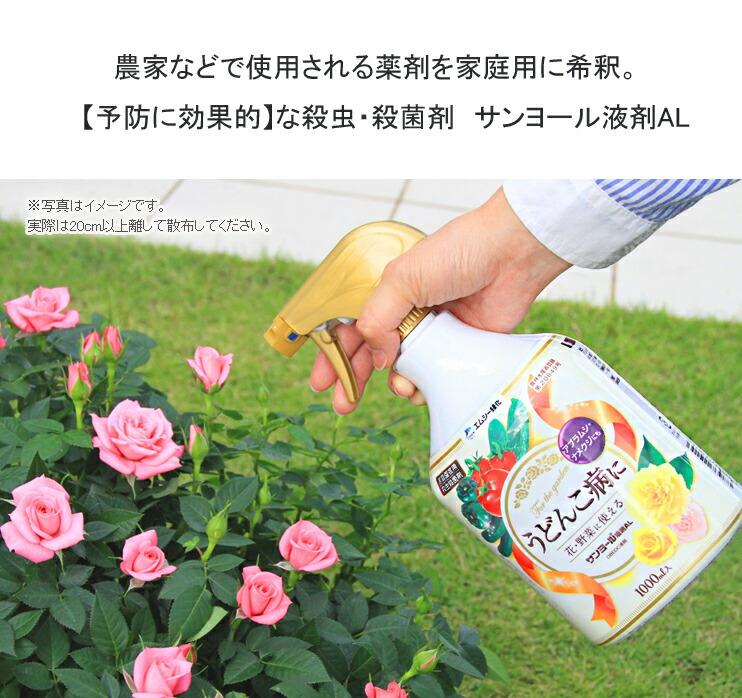 サンヨールAL01農家などで使用される薬剤を家庭用に希釈。【予防】に効果的な殺虫殺菌剤!