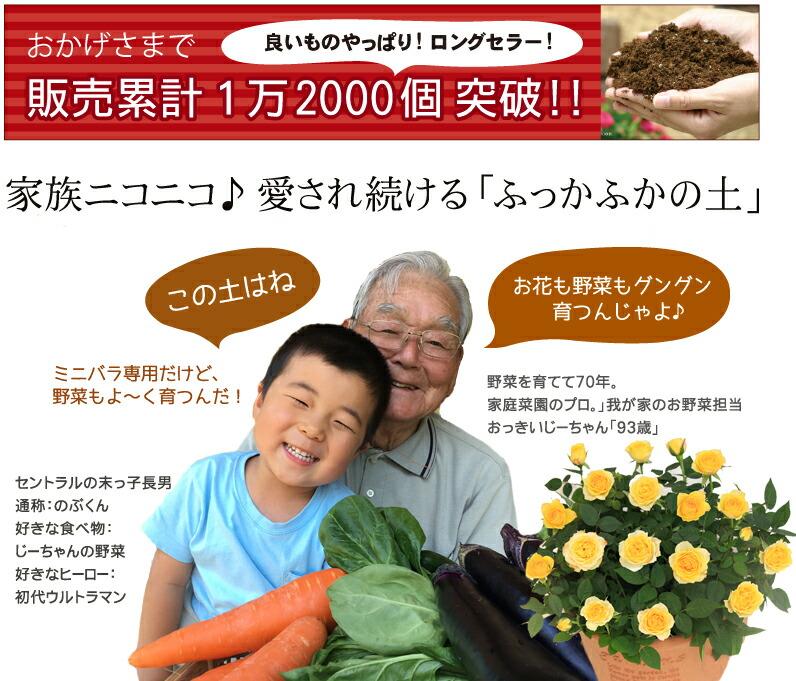 お花も野菜もよく育つ!