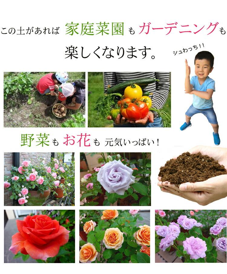 野菜もお花も元気いっぱい!