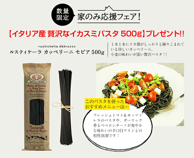 【イタリア産 贅沢なイカスミパスタ 500g】プレゼント!!