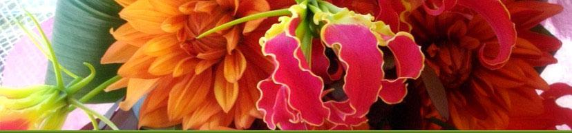 花の店シャンベルタンにご来店頂きありがとうございます。実店舗は今年16年目になります。これからもどうぞよろしくお願いいたします。