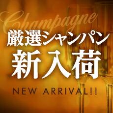 シャンパン新入荷