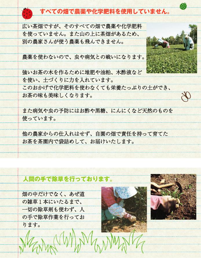 すべての畑で農薬や化学肥料を使用していません