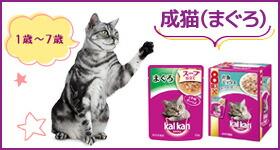 カルカン成猫(まぐろ)