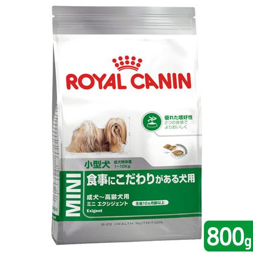 成犬・高齢犬用800g