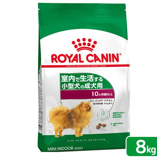 成犬用8kg