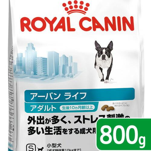>成犬用800g