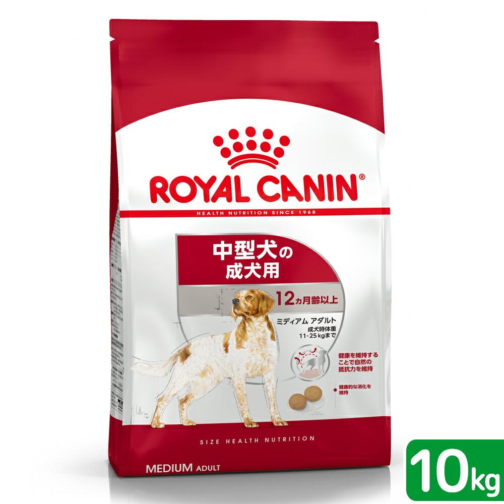 成犬用10kg