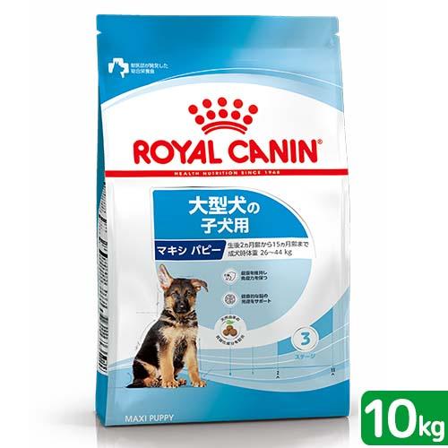 子犬用10kg