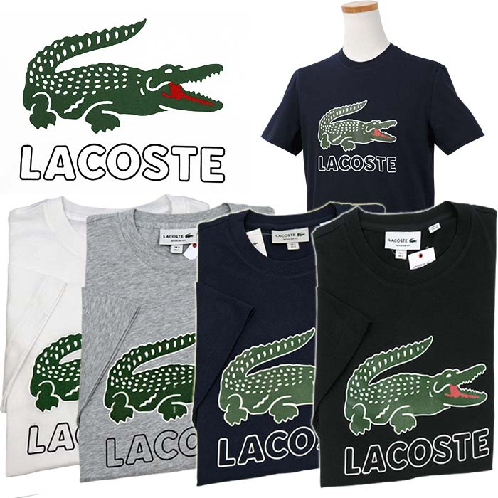 b7c59b4b The size that Lacoste Lacoste Men's big Lacoste short sleeves print T-shirt  Lacoste Lacoste T-shirt present XL,XXL has a big