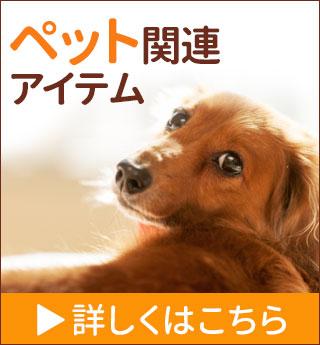 チェルシー ペット関連グッズ