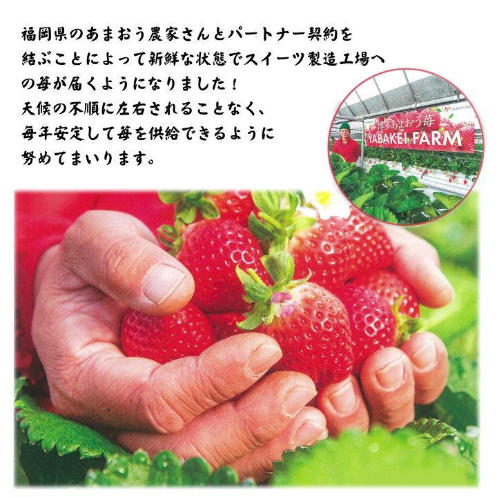 福岡のあまおう農家さん