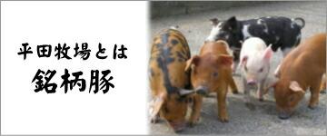 平田牧場銘柄豚