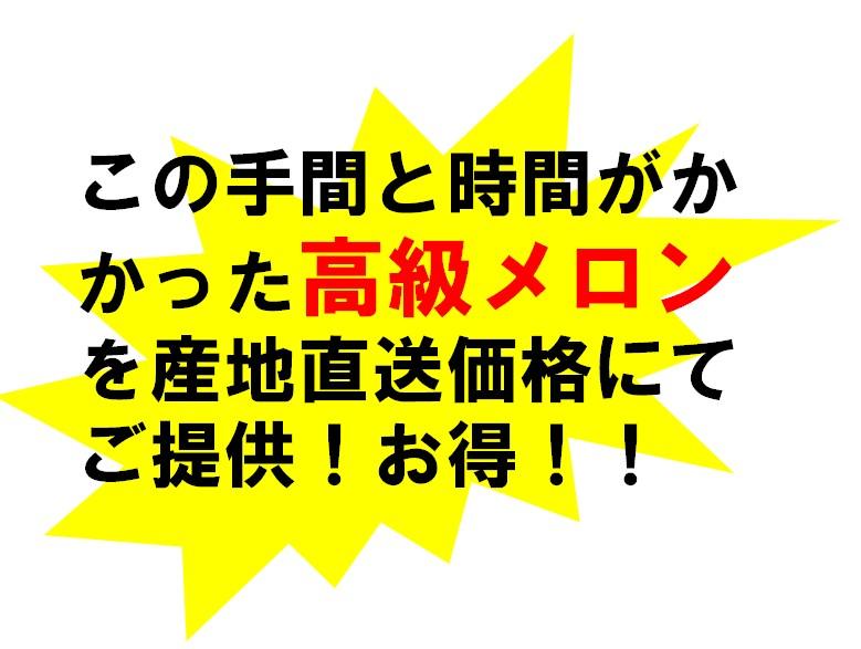 産地直送価格でお得!!
