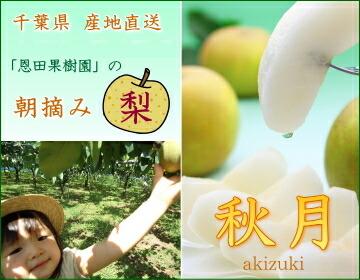 おいしい千葉の梨「秋月」