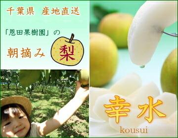 おいしい千葉の梨「幸水」