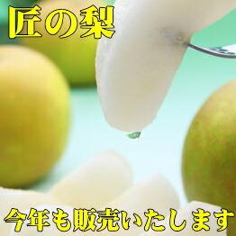 千葉県産地直送、朝もぎたてのあま〜い「梨」