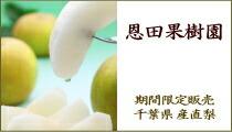 「恩田果樹園」期間限定販売 千葉県産直梨