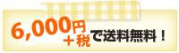 1注文6,000円(+税)のお買い上げで以上で送料無料