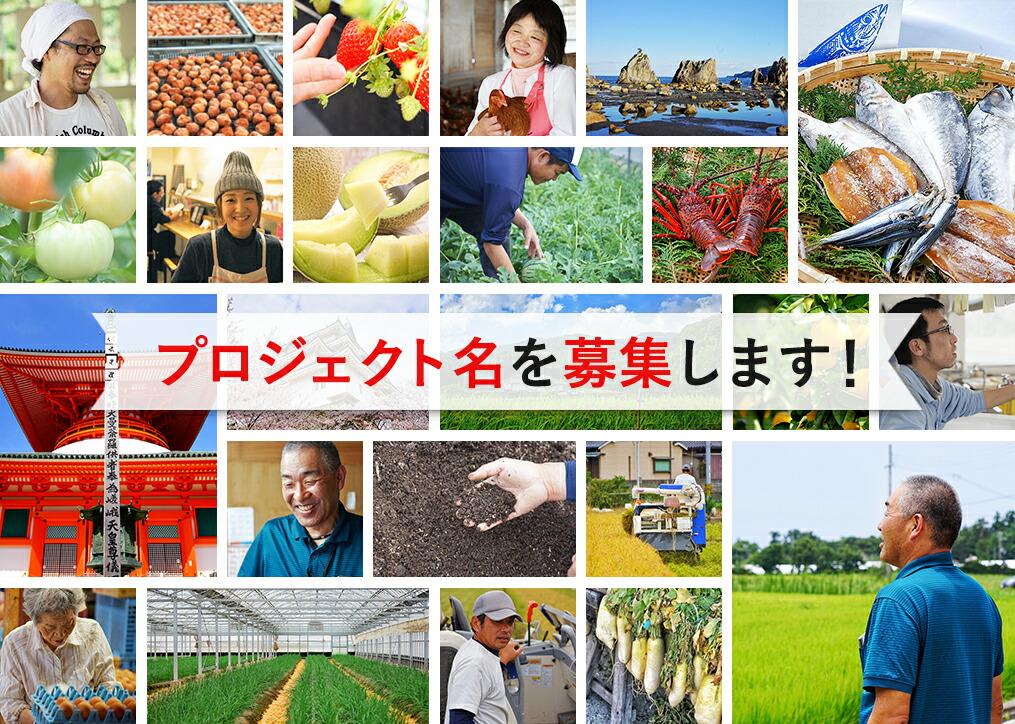 和歌山プロジェクトチャレンジ