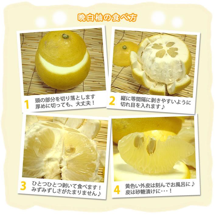 晩白柚の食べ方 1 頭の部分を切り落とします。厚めに切っても、大丈夫! 2 縦に等間隔に剥きやすいように切れ目を入れます♪ 3 ひとつひとつ剥いて食べます!みずみずしさがたまりません♪ 4 黄色い外皮は刻んでお風呂に♪皮は砂糖漬けに・・・!