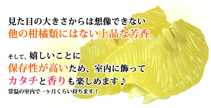 見た目の大きさからは想像できない他の柑橘類にはない上品な芳香。そして、嬉しいことに保存性が高いため、室内で飾ってカタチと香りも楽しめます♪常温の室内で一ヶ月くらい持ちます!