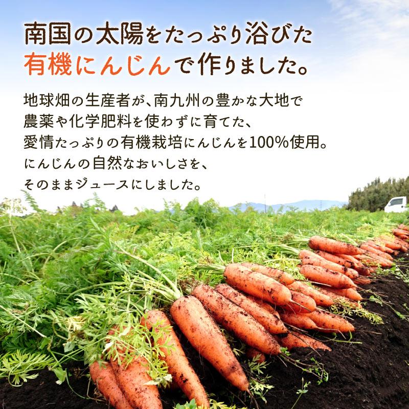 地球畑 鹿児島県産有機にんじん100%