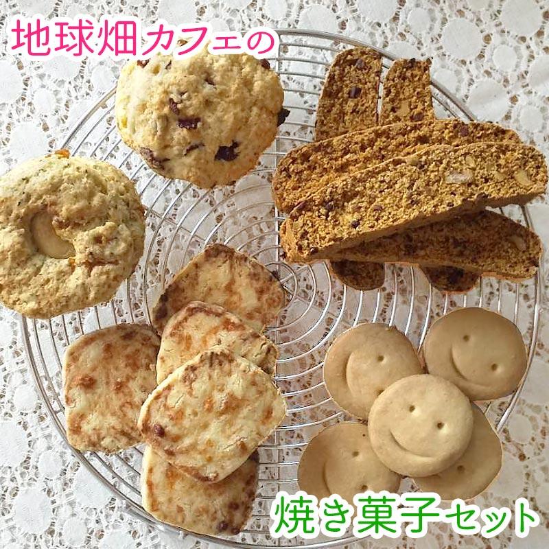 菊芋パウダー