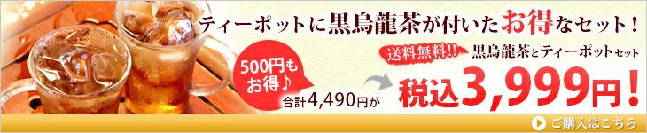 ティーポットに黒ウーロン茶もついて500円お得なセット!
