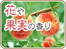 花や果実の香り