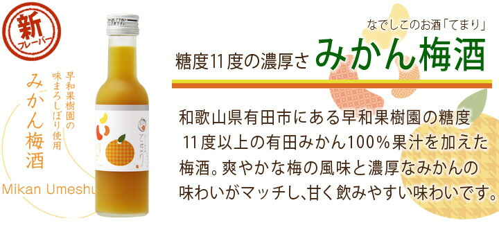 紀州南高梅を新鮮な内に漬け込みます。収穫当日に漬け込まれる梅の実。実がふっくらしてみずみずしい