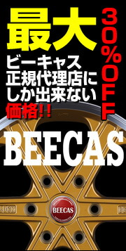 BEECAS